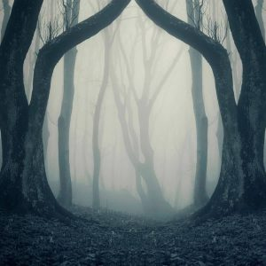 Most Haunted Places in India (2021)